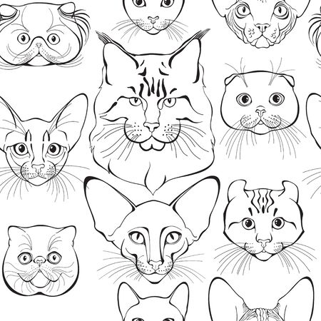 �¡ats face of different breeds. Animal art background. Vector.
