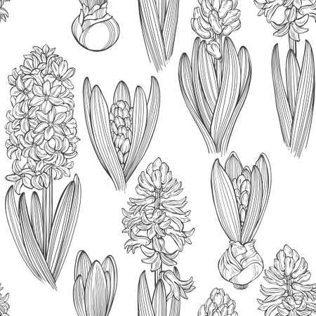 Illustration pour Hyacinths. Floral endless background. Hand-drawn spring vector illustration. - image libre de droit