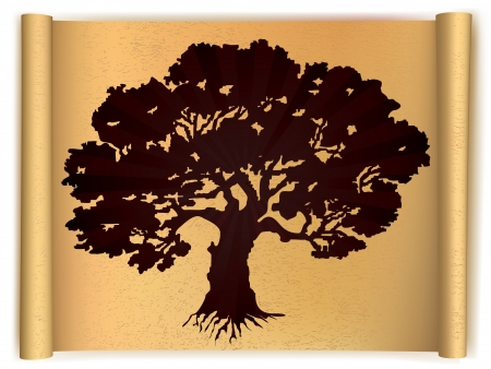 Tree on old scroll paper  Vector