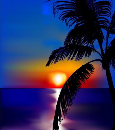 Illustration pour Sunset on sea with palm   - image libre de droit