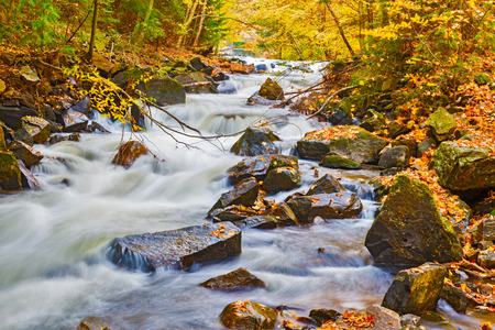 Picturesque river in fall colors in Algonquin Park, Ontario.