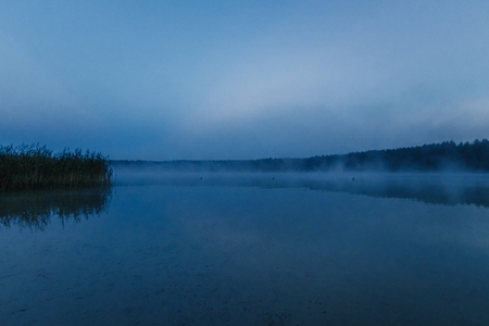 Foto de Fog over the lake, twilight over the lake, very dense fog, dawn, blue sky over the lake, the morning comes, the forest reflects in the water, surface water, clear morning sky, gothic, Grim picture - Imagen libre de derechos