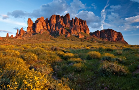 An expansive view of the Superstition Mountains, Arizona, USA, at sunset with spring wildflowers blooming in the foreground.