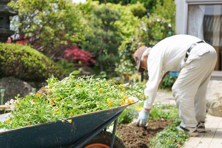 Foto de Elderly man planting a garden - Imagen libre de derechos