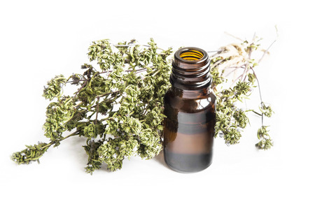 Thyme Essential Oil Bottle with Thyme Bunch Isolated on White Background