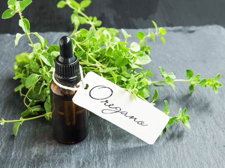 Oregano oil bottle with label and oregano herb bunch