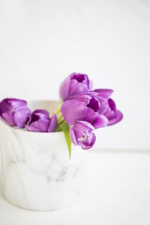 Foto für Purple tulips bouquet in vase still life on white background - Lizenzfreies Bild