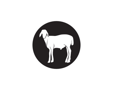 Goat black animals vector logo and symbol template: Royalty