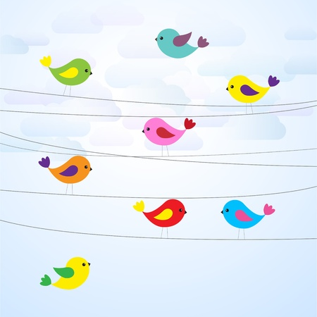 Cute colorful birds on wires