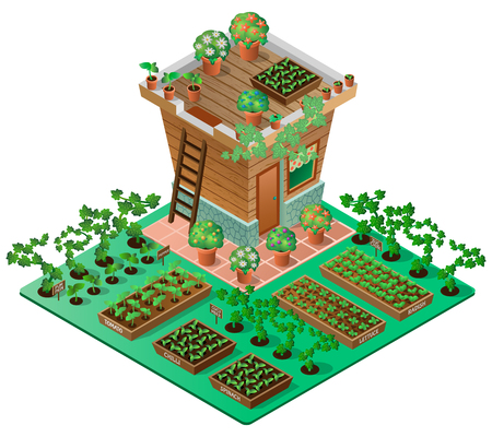 Illustration pour Garden in spring. Garden house with seedlings and flowers. 3d isometric view. Vector illustration. - image libre de droit