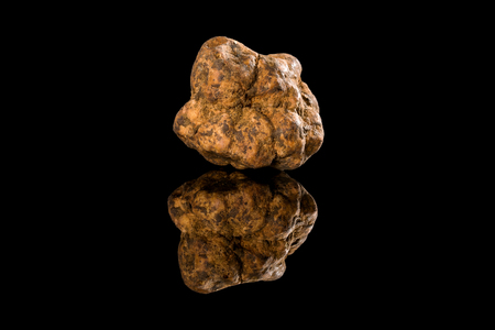 Photo pour Whole white truffles on black background with reflection. Luxurious culinary cooking ingredients. - image libre de droit