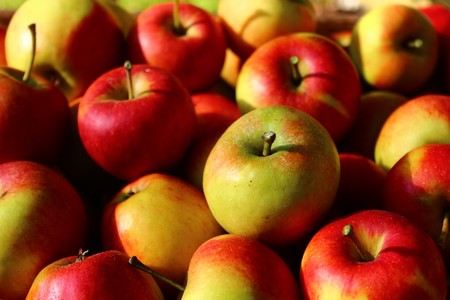 many ripe apples