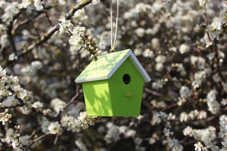 Photo pour Birdhouse in a flowering bush - image libre de droit
