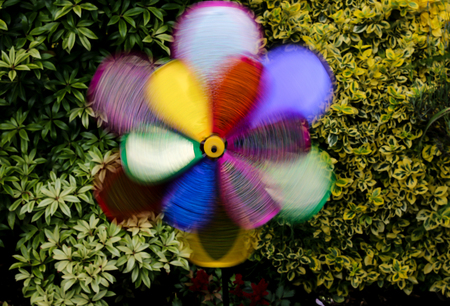 A brightly coloured windmill spins at high speed in the breeze