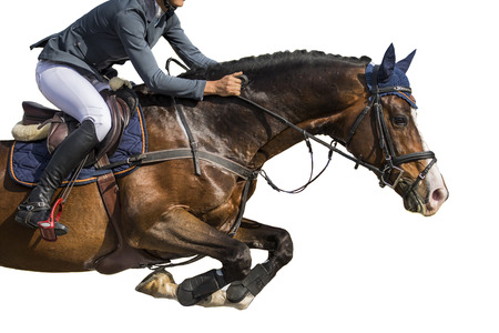 Photo for Equestrian Sports, Horse Jumping Event, Isolated on White Background - Royalty Free Image