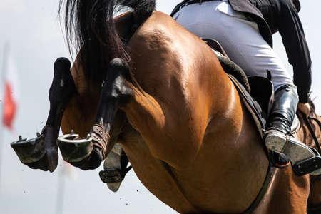 Photo pour Horse Jumping, Equestrian Sports themed photo. - image libre de droit