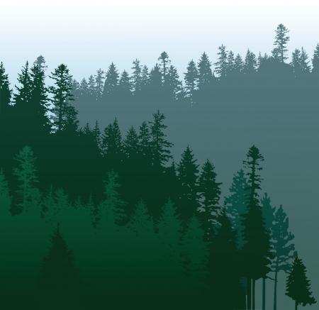 Illustration pour caniferous forest - image libre de droit