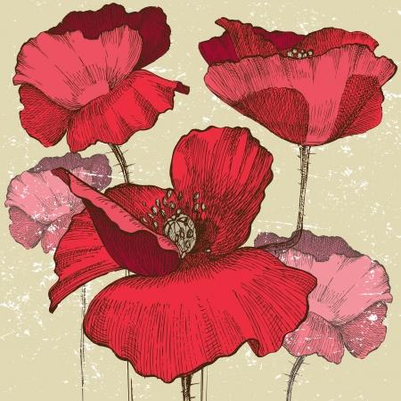 Illustration pour poppy flowers in vintage style - image libre de droit