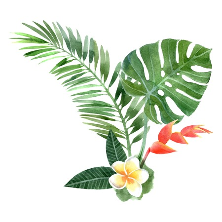 hand drawn watercolor tropical plantsのイラスト素材
