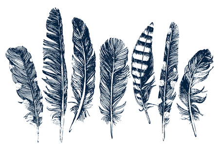 Illustration pour 7 hand drawn feathers on white background - image libre de droit