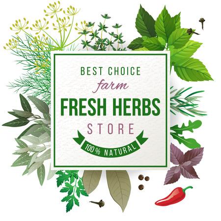 Vektor für Fresh herbs store emblem - easy to use in your own design - Lizenzfreies Bild