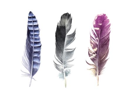 Ilustración de Hand drawn watercolor feather set - Imagen libre de derechos