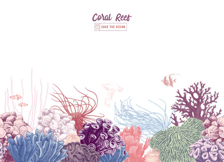 Illustration pour Hand drawn colorful seamless coral border. Vector illustration - image libre de droit