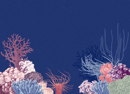 Illustration pour Vector background with hand drawn colorful coral reef on dark blue background. Vector illustration in vintage style - image libre de droit