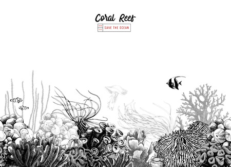 Illustration pour Hand drawn black and white seamless coral border. Vector illustration - image libre de droit