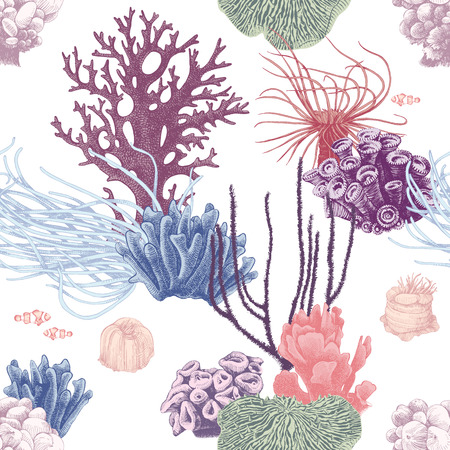 Illustration pour Seamless pattern with colorful hand drawn coral reef on white background. Vector illustration in vintage style - image libre de droit