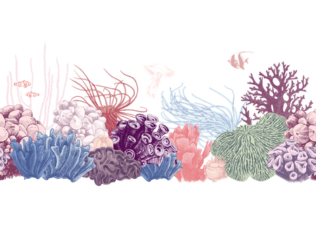 Illustration pour Hand drawn colorful seamless coral reef border. Vector illustration - image libre de droit