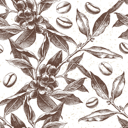 Illustration pour Seamles pattern with hand drawn coffee plant and beans. vector illustration in retro style - image libre de droit