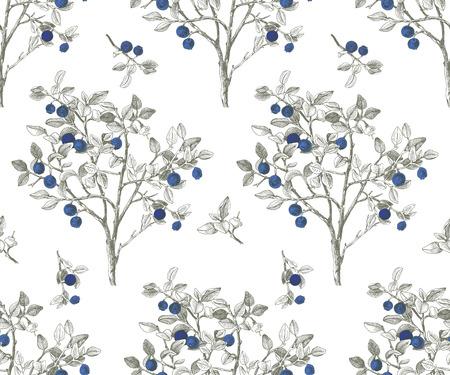 Illustration pour Seamless pattrn with blueberry bushes - image libre de droit
