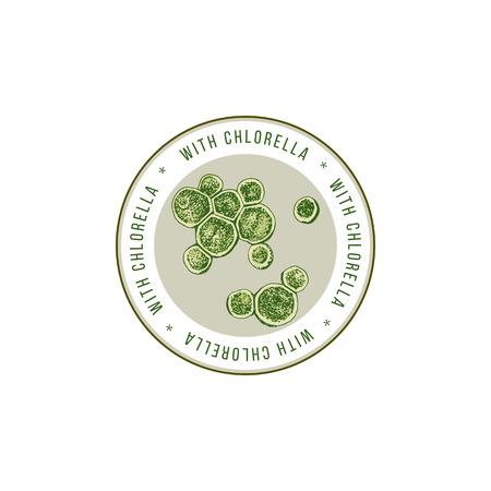 Illustration pour Round emblem with hand drawn chlorella algae - image libre de droit
