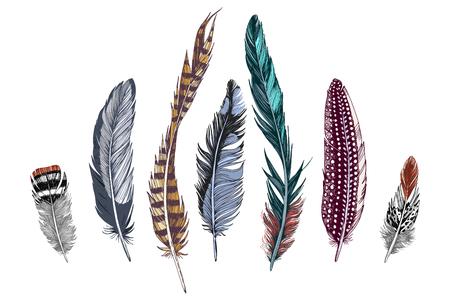 Illustration pour 7 hand drawn colorful feathers on white background. Vector illustration - image libre de droit