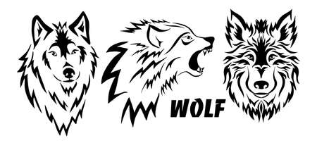 Illustration pour The wolf is beautiful with curls. Tattoo. Vector illustration - image libre de droit