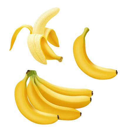 Illustration pour Set of realistic vector banana, branch of bananas, Half Peeled Banan and single banana isolated on white, bright yellow sweet fruit, banana icon, vector illustration - image libre de droit