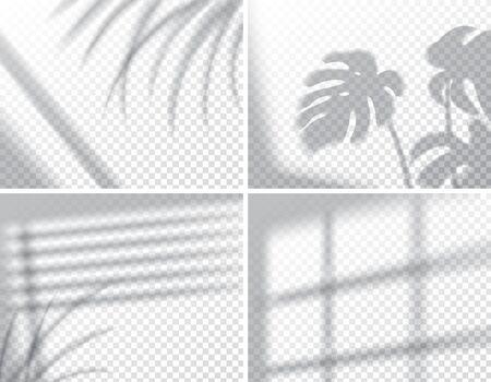 Set of shadows, overlay effects mock up, window frame and leaf of plants, natural interior light, vector illustration