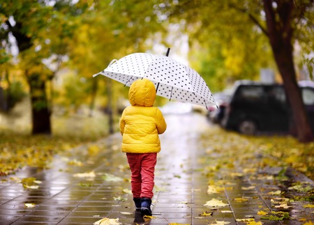 Photo for Little child walking in the city park at rainy autumn day. Toddler boy with umbrella for fall weather - Royalty Free Image