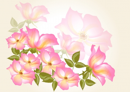 Abstract flower backdrop