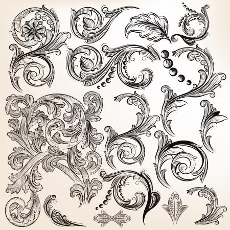 Vector set of calligraphic elements for design  Calligraphic vector