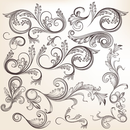 Illustration pour Vector set of swirl elements for design. Calligraphic vector - image libre de droit