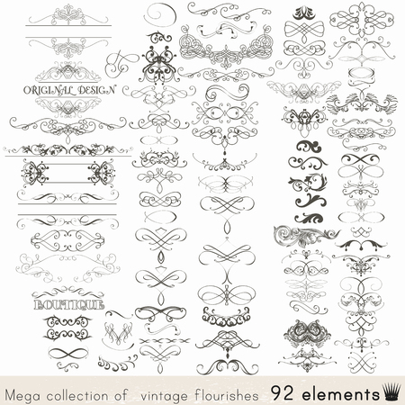 Collection of vector calligraphic elements and page decorations