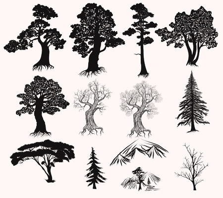 Illustration pour Collection or set of hand drawn detailed trees silhouettes oak pine fur tree and other - image libre de droit