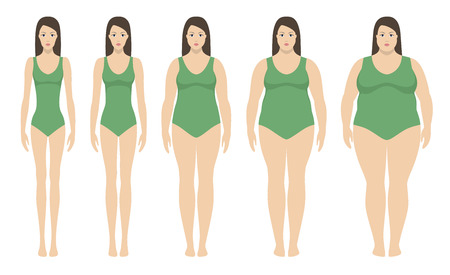 Ilustración de Body mass index vector illustration from underweight to extremly obese. Woman silhouettes with different obesity degrees. Female body with different weight - Imagen libre de derechos