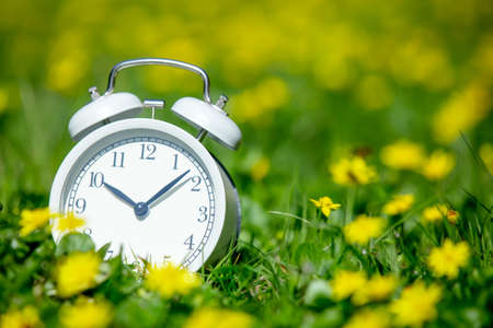 Photo pour White classic alarm clock with bells on green meadow with yellow flowers - image libre de droit