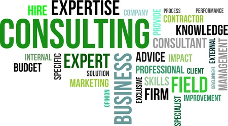 A word cloud of consulting related items