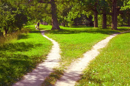 Photo for Two paths diverging and a lone cyclist on one of them drives away. Summer landscape - Royalty Free Image
