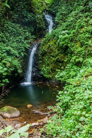San Luis waterfall in a cloud forest of Reserva Biologica Bosque Nuboso Monteverde, Costa Rica