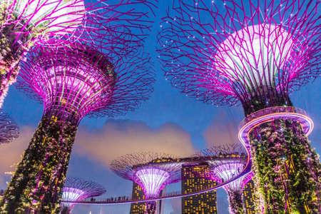 Photo pour SINGAPORE, SINGAPORE - MARCH 11, 2018: Evening view of Supertree Grove in Singapore - image libre de droit
